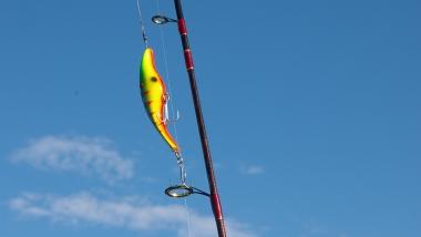 Spinningowa metoda połowu ryb