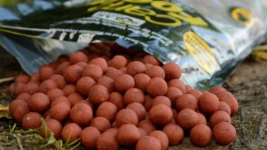 Kulki proteinowe na karpia – własne czy firmowe? #1
